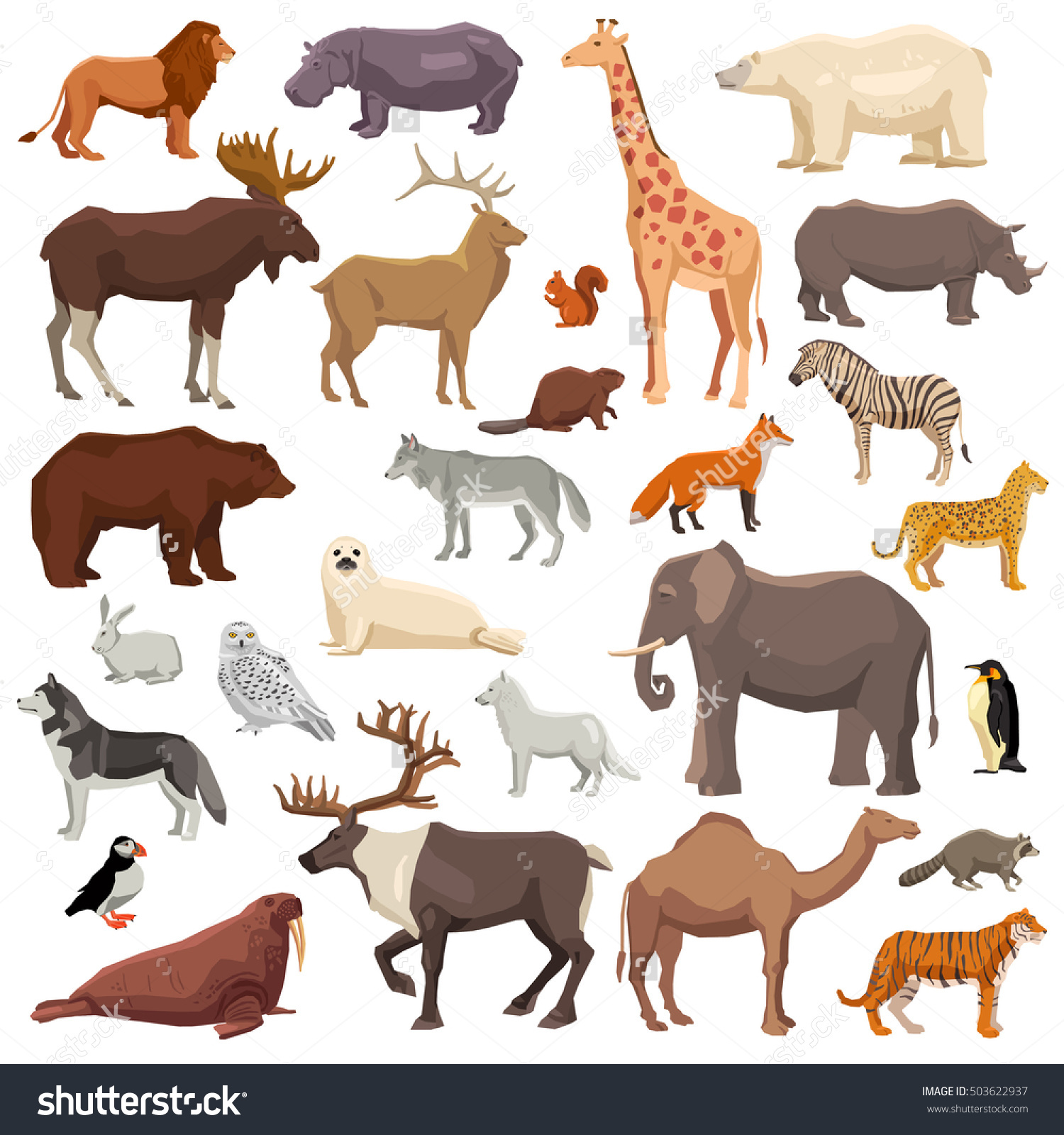 Big Flat Set Wild Animals Birds Stock Vector 503622937.
