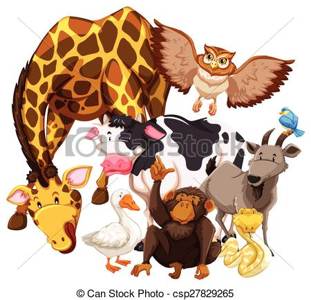 Vectors Illustration of Wild animals living together illustration.