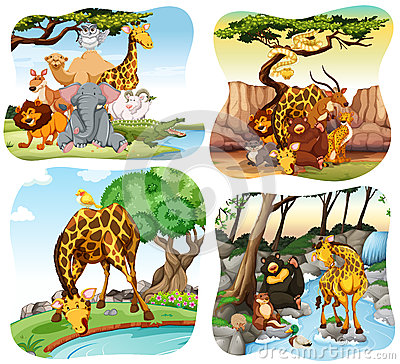 Wild Animals Living In The Forest Stock Vector.
