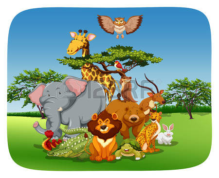 Wild Living Animals Images, Stock Pictures, Royalty Free Wild.