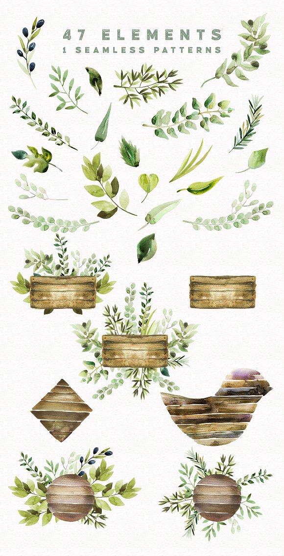 Watercolor Wild Herbs vol.3 ~ Illustrations on Creative Market.