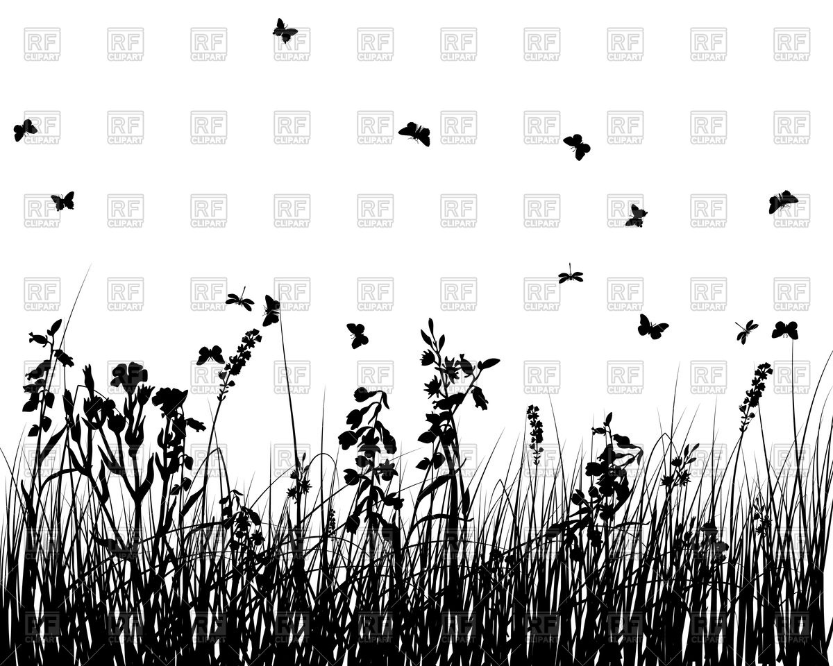 Meadow with wild grass silhouettes Vector Image #84598.