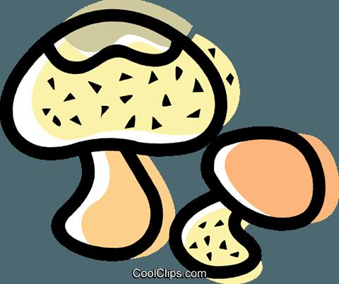 Wild Mushrooms Royalty Free Vector Clip Art illustration.