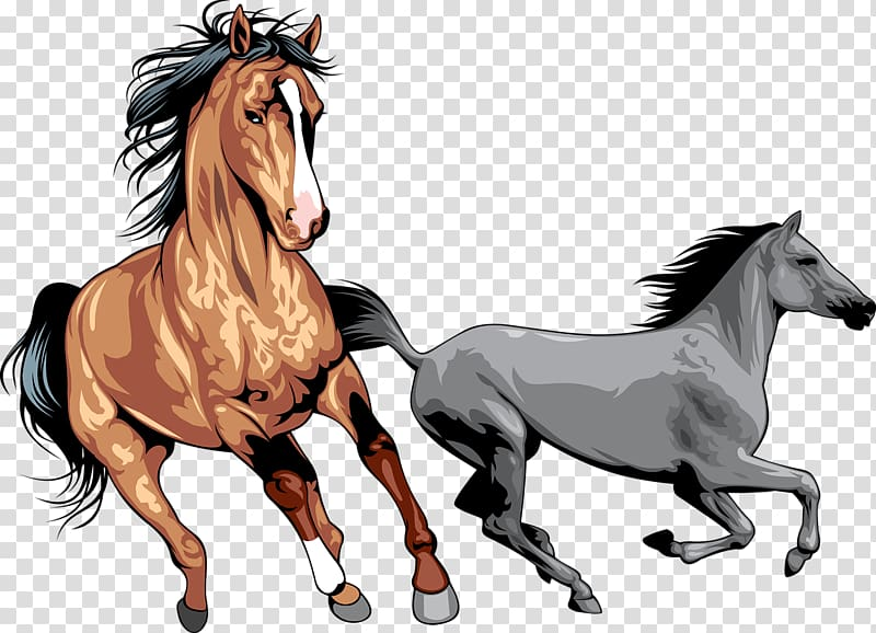 Gray and brown horses clip ar t, Mustang Wild horse.