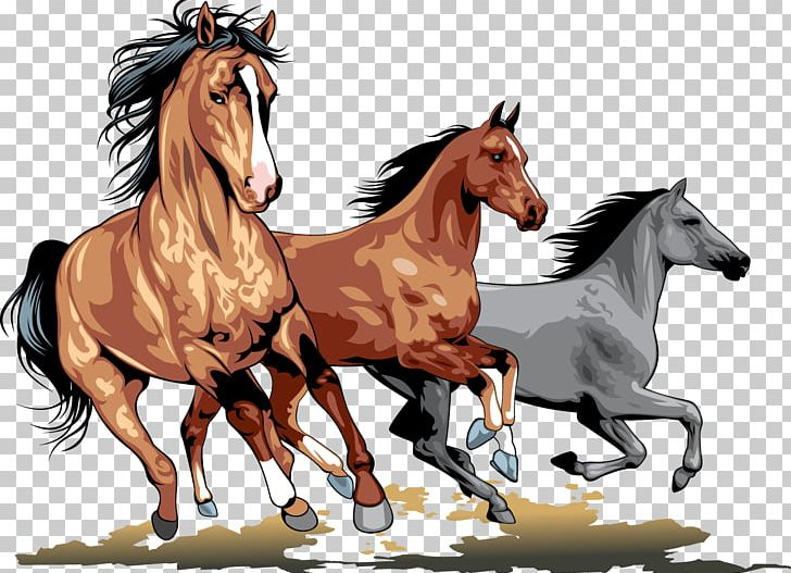 Wild Horse PNG, Clipart, Animal, Animals, Bridle, Clip Art.
