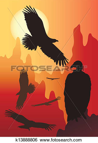 Clip Art of wild birds in the wild nature k13888806.