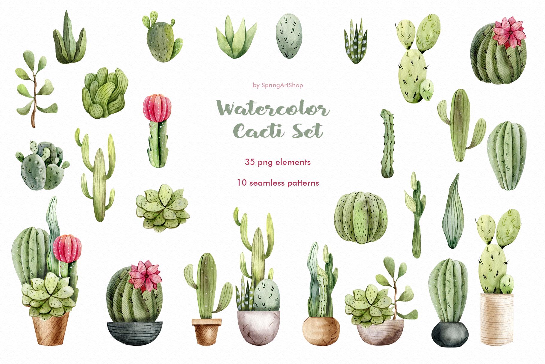 Watercolor Cacti clipart Plants watercolor succulents.