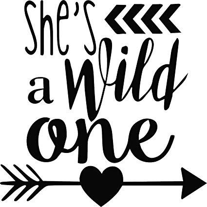 Amazon.com: SHE'S A WILD ONE VINYL STICKER (10