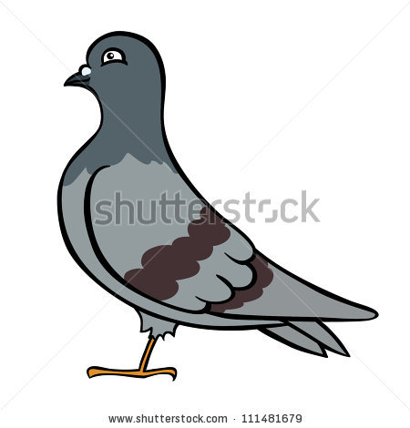 Pigeon Vector Character Color Flat Illustration Stock Vector.