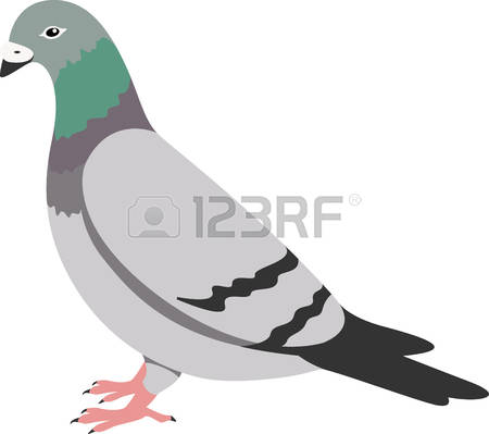 151 Carrier Pigeons Stock Vector Illustration And Royalty Free.