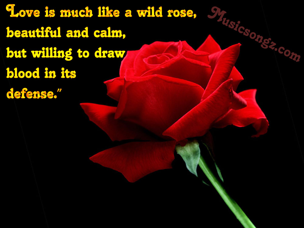 Red rose clipart with quotes.