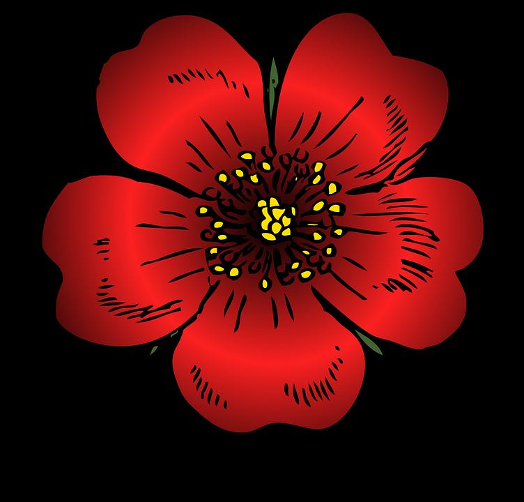 Red, Rose.