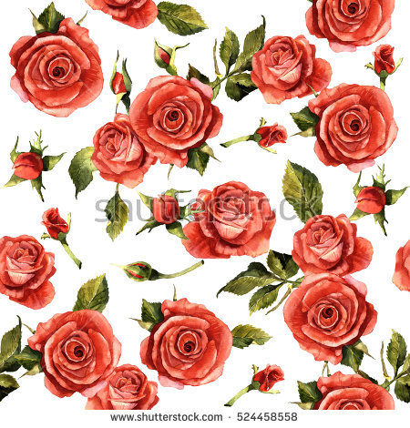 Red Rose Stock Photos, Royalty.