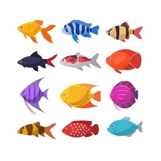 Isolated River Fish. Set of Freshwater Aquarium Cartoon.