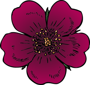 Wild Rose Clip Art at Clker.com.