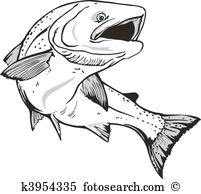 Wild salmon Clip Art and Stock Illustrations. 112 wild salmon EPS.