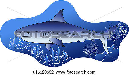 Clipart of fish, shark, vertebrate, sea fish, fishes, wild animal.