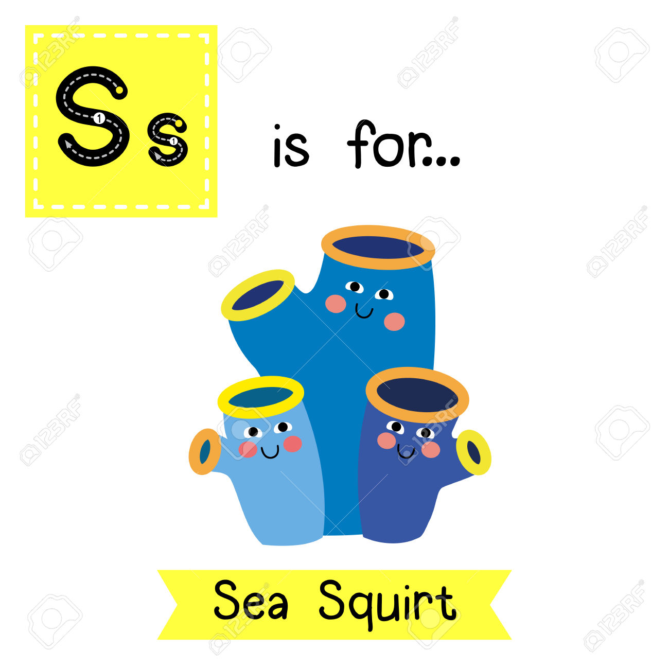 S Letter Tracing. Sea Squirt. Cute Children Zoo Alphabet Flash.