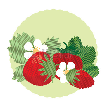 Set Of Berries And Leaves Of Wild Strawberry, Flat Illustration.