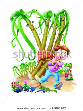 Sugarcane Illustration Stockfoto's, rechtenvrije afbeeldingen en.