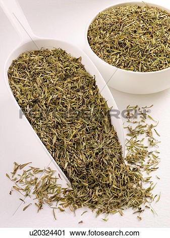 Stock Photography of Dried Wild Thyme in Scoop.