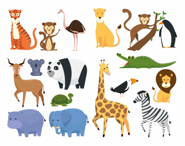 Set wild animals in the zoo safari reserve Vector.