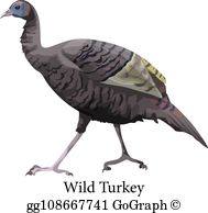 Wild Turkey Clip Art.