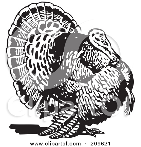 Clipart Retro Black And White Wild Turkey.