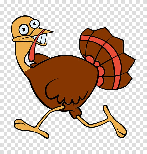 Turkey meat Turkey trot Running, funny scared transparent.