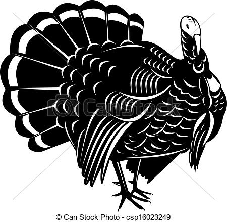 Wild turkey Illustrations and Stock Art. 778 Wild turkey.