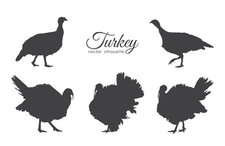 943 Wild Turkey Stock Vector Illustration And Royalty Free Wild.