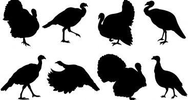 Wild Turkey Silhouette Clip Art Archives ~ Vector Images Design.