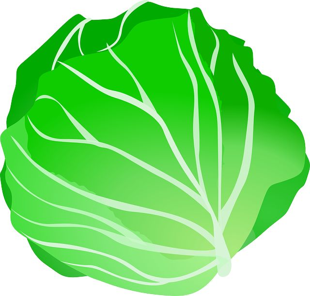 1000+ images about FRUIT AND VEGETABLES CLIP ART on Pinterest.