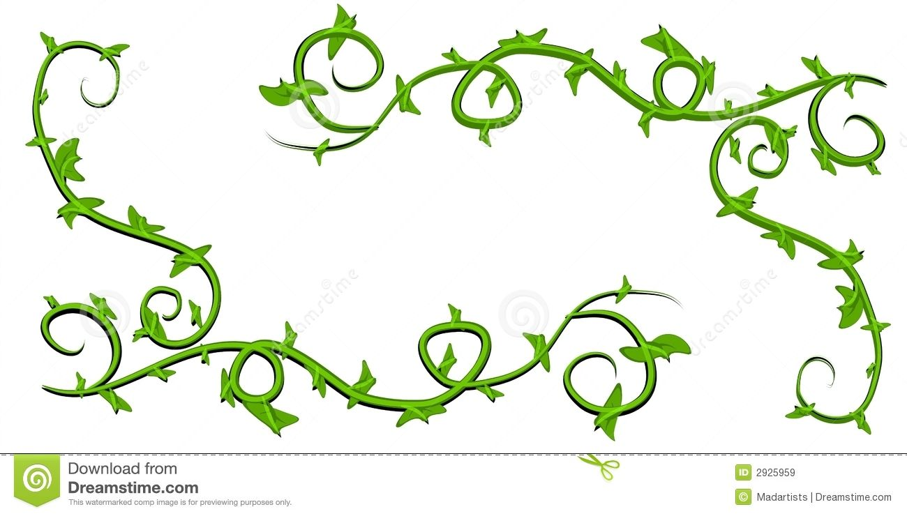 An illustration featuring simple green leaf and vines in.