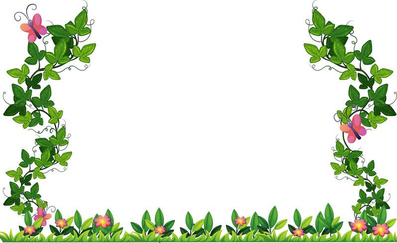 Border design with vine and butterflies.