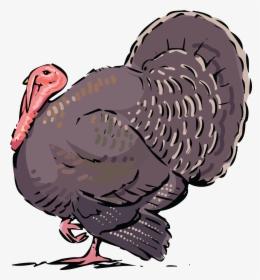 Bird Turkey Vulture Silhouette Clip Art, HD Png Download.