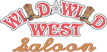Best Live Country Western Music Bars, Clubs in Pinellas & Tampa.