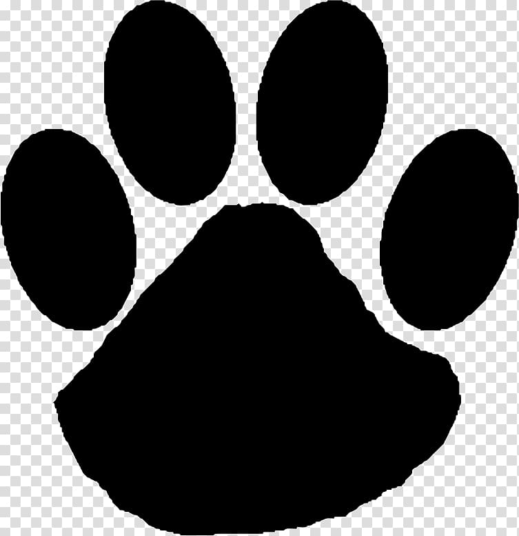 Wildcat Paw , Cat transparent background PNG clipart.