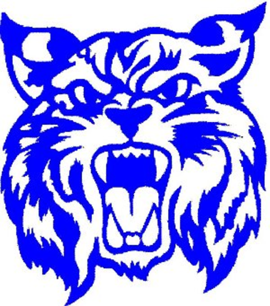 Free Wildcat Mascot, Download Free Clip Art, Free Clip Art on.