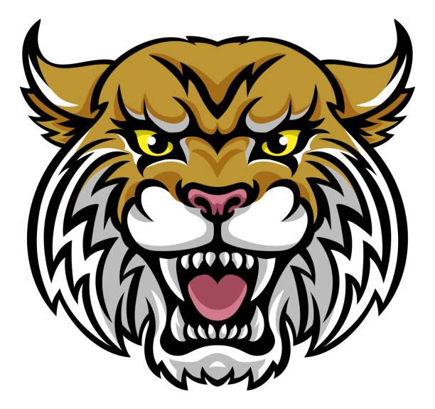 Best Wildcat Mascot Illustrations, Royalty.