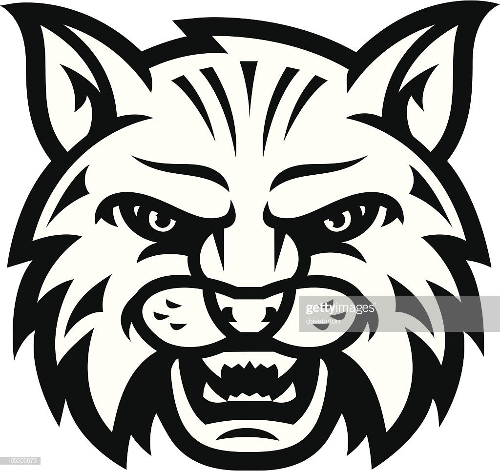 60 Top Wildcat Animal Stock Illustrations, Clip art, Cartoons.