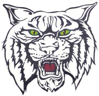 Wildcat Face Cliparts.