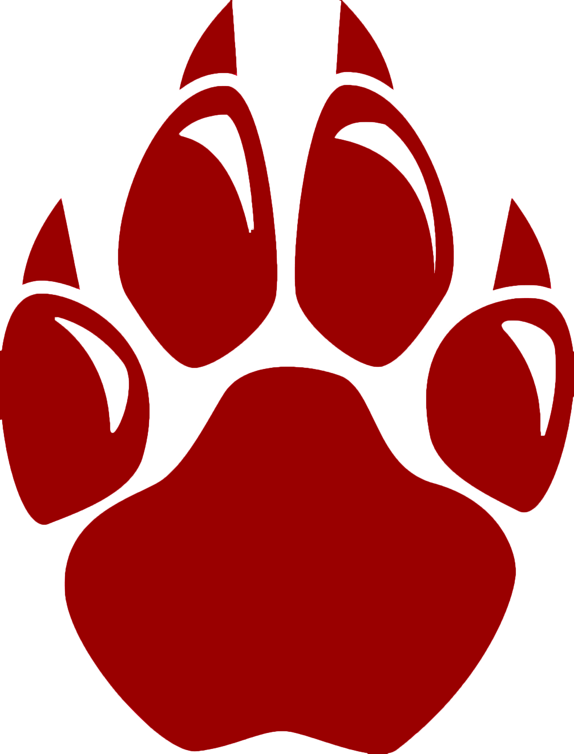 Wildcat footprint clipart.