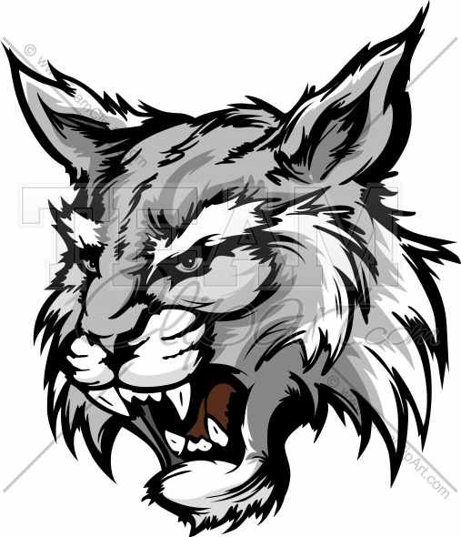 Wildcat Mascot Head Graphic Vector Illustration.