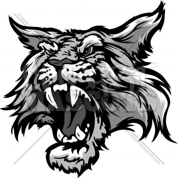 Wildcat Head.