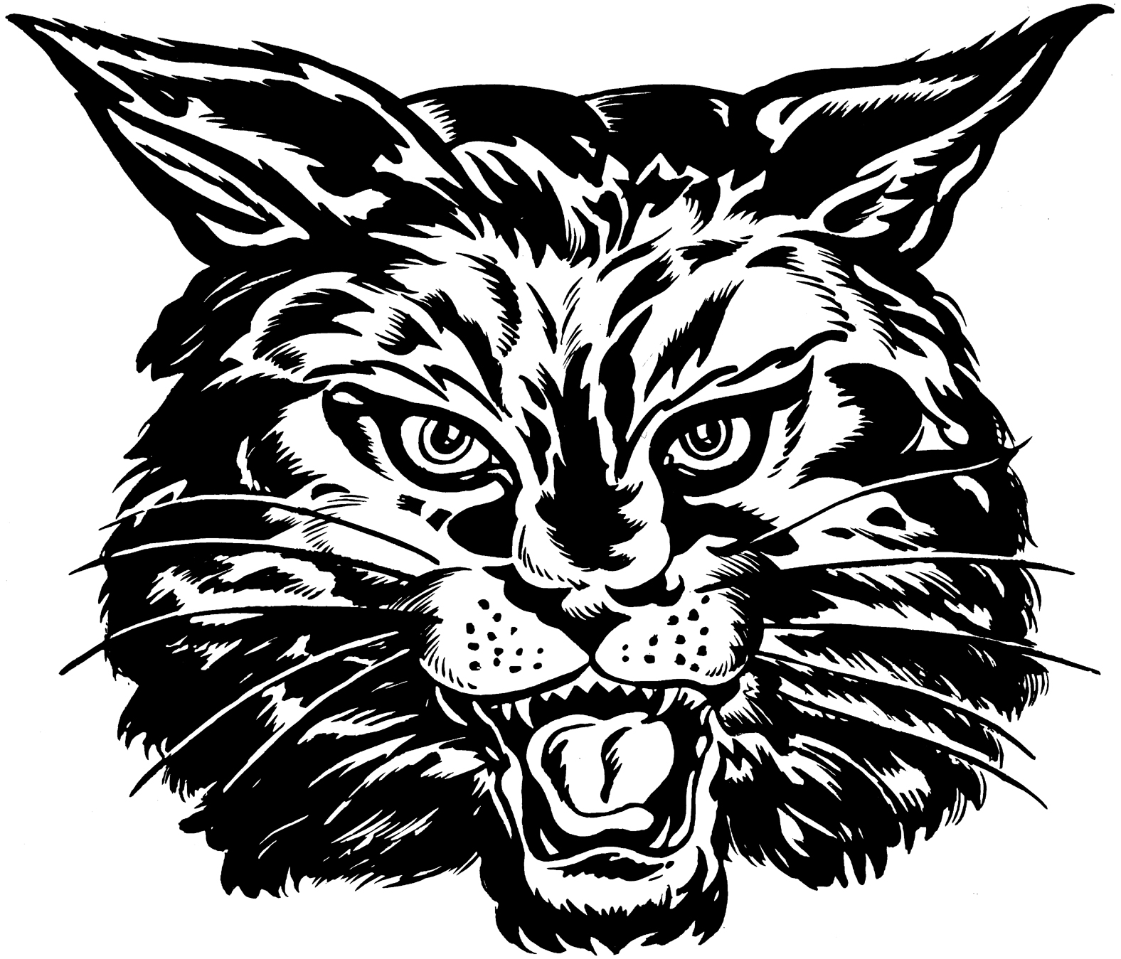 Collection of 14 free Head clipart wildcat bill clipart dollar sign.
