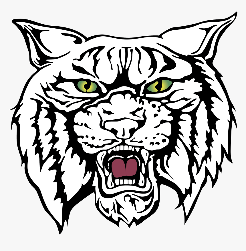 Wildcat Clipart Free Download Best Wildcat Clipart.
