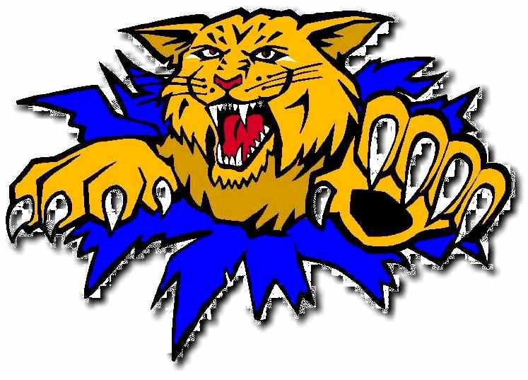 Free Wildcat Logo, Download Free Clip Art, Free Clip Art on Clipart.
