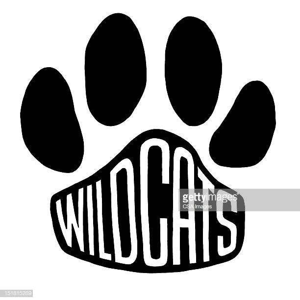 60 Top Wildcat Mascot Logo Stock Illustrations, Clip art, Cartoons.