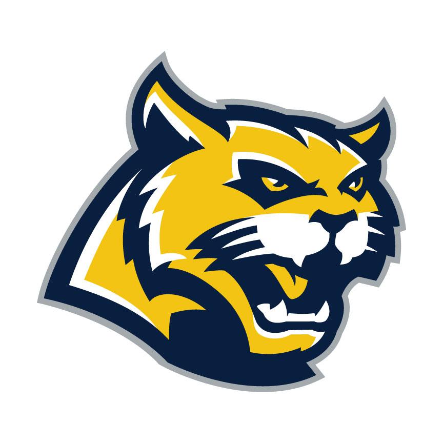 Wildcat Logo.